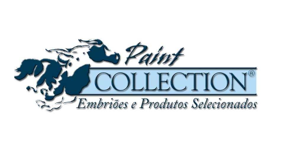 Paint Collection