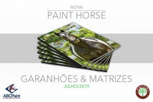 Nova PAINT HORSE MAGAZINE – GARANHÕES & MATRIZES  Circulará em Julho