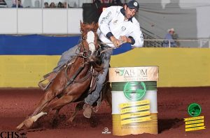 Quarter Collection é destaque no GP ABQM da I Copa Play Horse