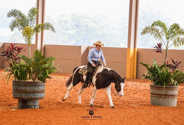 Paint Horse se destaca no 16º Campeonato Gaúcho de Rédeas