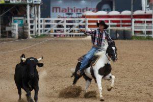 Paint Horse vai marcar presença na Expointer com cinco modalidades