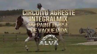 CIRCUITO AGRESTE INTEGRAL MIX PAINT DE VAQUEJADA MOVIMENTA O BRASIL